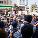 浅草の三社祭で神輿をかつぐ男たちを追いかけてみた