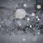 嬉しかった雪、楽しかった雪