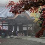 深大寺の紅葉が見ごろ!朝靄のかかる早朝に写真を撮影してきた