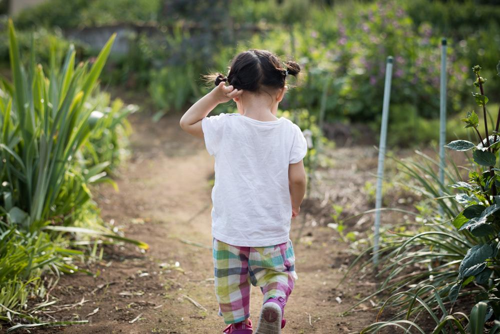 畑で遊ぶ娘